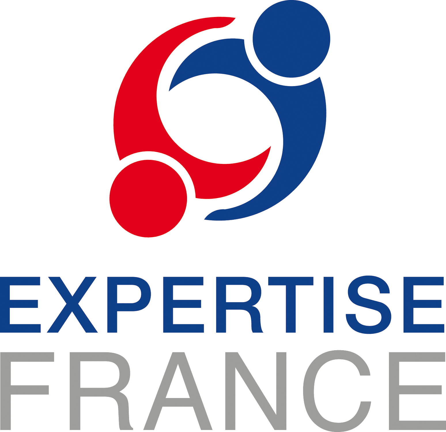 Expertise France logo